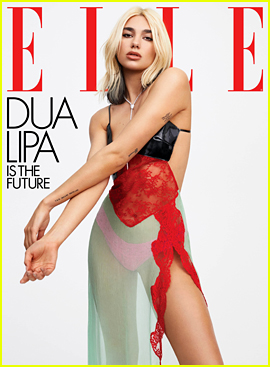 Dua Lipa Reveals How She & Anwar Hadid Are Getting Through the Pandemic (& What They're Watching!)