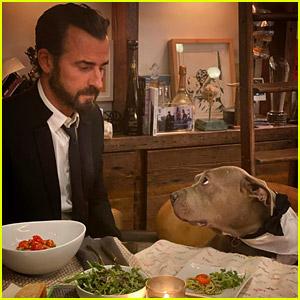 Justin Theroux & His Dog Kuma Had a Formal Friday Dinner at Home!