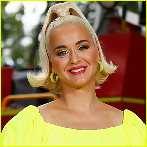 Katy Perry Mourns Death of Her Cat Kitty Purry