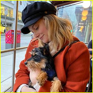 Lili Reinhart's Dog Milo Was Attacked During a Walk