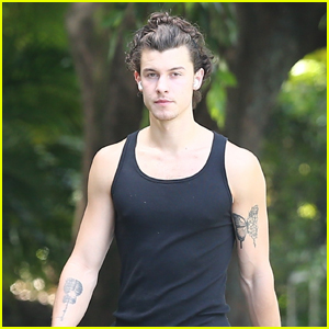 Shawn Mendes Goes for a Solo Stroll Amid Quarantine in Miami