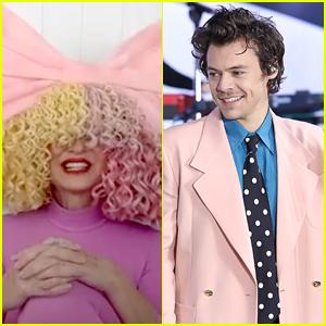 Sia Talks About Getting Flirty With Harry Styles: 'I Felt Dizzy'