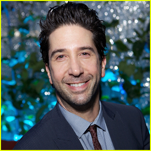 David Schwimmer Addresses Status of 'Friends' Reunion