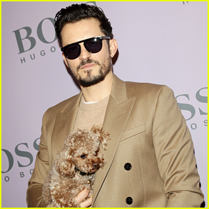 Orlando Bloom Says Dog Mighty Still Being Lost Is A 'Nightmare'