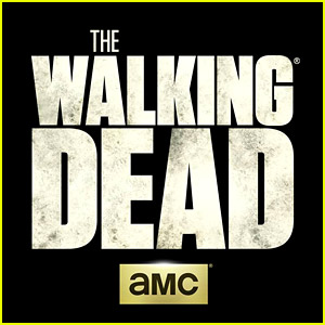 So Much 'The Walking Dead' News Was Just Revealed!