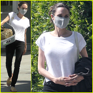 Angelina Jolie Picks Up a New Litter Box at the Pet Store