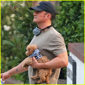 Orlando Bloom Takes Katy Perry's Dog Nugget for a Walk While Awaiting the Birth of His Daughter