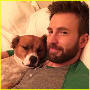 Chris Evans Fans Are Sharing Photos of Him With His Dog Instead of THAT Photo