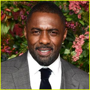Idris Elba to Star in Lion-Themed Survival Thriller 'Beast'