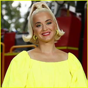 Katy Perry Gets Restraining Order Against Alleged Stalker