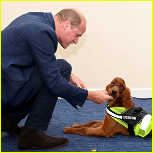 Prince William Falls In Love With PTSD Training Dog During Northern Ireland Visit