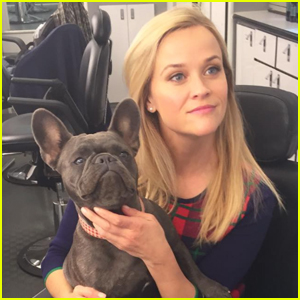 Reese Witherspoon & Family Mourn Death of Beloved Dog Pepper