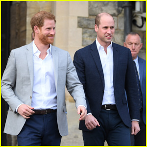 This Is Why Prince Harry Questioned Prince William's 'Concern' for Meghan Markle Before Wedding
