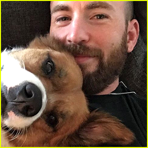 Chris Evans Shares New Selfie with Dodger & Seemingly Trolls Trump with the Caption
