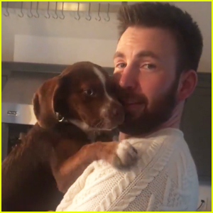 Chris Evans Cuddles a Puppy in His Iconic 'Knives Out' Sweater & Fans Cannot Get Enough!