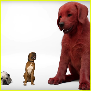 'Clifford the Big Red Dog' Movie Debuts First Look Teaser!