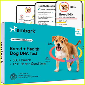 This Dog DNA Test That Has Amazing Reviews Is $64 Dollars Off Right Now