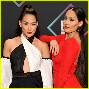 Nikki & Brie Bella Are Serious About Their Return To The WWE