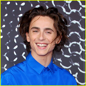 Timothee Chalamet Posted a Selfie in See-Through Shirt, But Then Deleted It