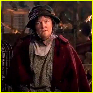 Brenda Fricker, The Pigeon Lady From 'Home Alone 2', Reveals She Spends Christmas & New Year's Alone