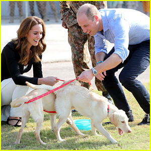 Kate Middleton & Prince William Adopted A New Puppy Just Before Their Other Dog Lupo Died