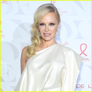 Pamela Anderson Marries Bodyguard Dan Hayhurst!