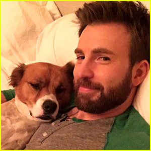 Chris Evans Did Surgery on His Dog's Toy While He Was Actually in Surgery