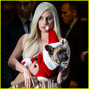 Lady Gaga Is 'Completely Devastated & Sickened' Over What Happened to Her Dogs & Dog Walker