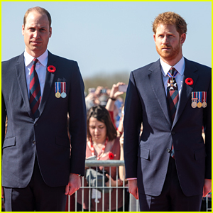Princes William & Harry Will Still Attend Princess Diana Memorial Together This Summer