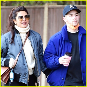 Priyanka Chopra & Nick Jonas Reunite After a Few Months Apart (Photos)