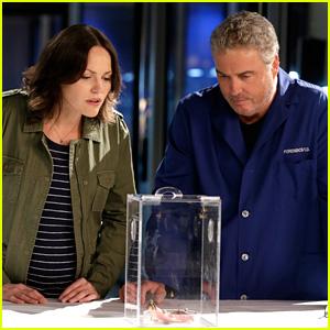 William Petersen Will Return For 'CSI: Vegas' Reboot on CBS With Jorja Fox