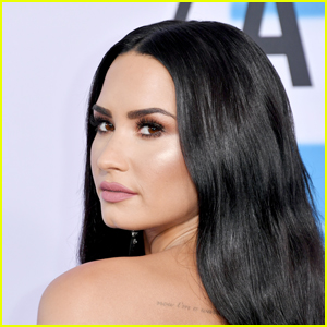 Froyo Shop Puts Demi Lovato's 'Sorry, Not Sorry Apology' on Blast, Denies Receiving Any Donations