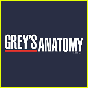 Another 'Grey's Anatomy' Star Is Leaving The Show