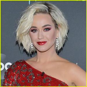 Katy Perry Reveals Daughter Daisy Has Hit Some Major Milestones!