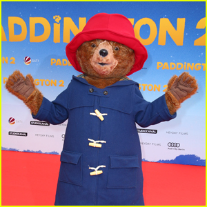 'Paddington 2' No Longer Has a Perfect Score on Rotten Tomatoes - Find Out Why!