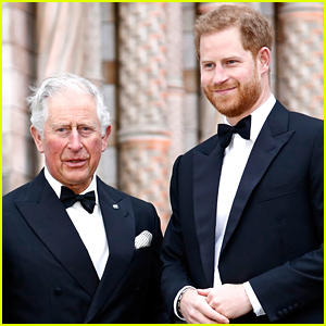 Prince Charles Refused to Answer This Question About Prince Harry
