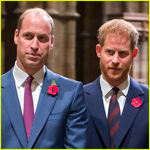 Prince William & Prince Harry Break Silence on Inquiry Into Princess Diana's BBC Interview - Read Their Statements