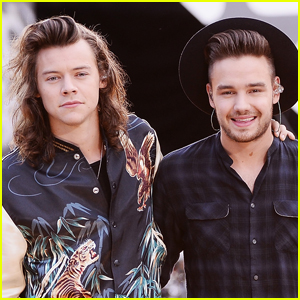 Liam Payne Details Recent 'Lovely' Phone Call with Harry Styles